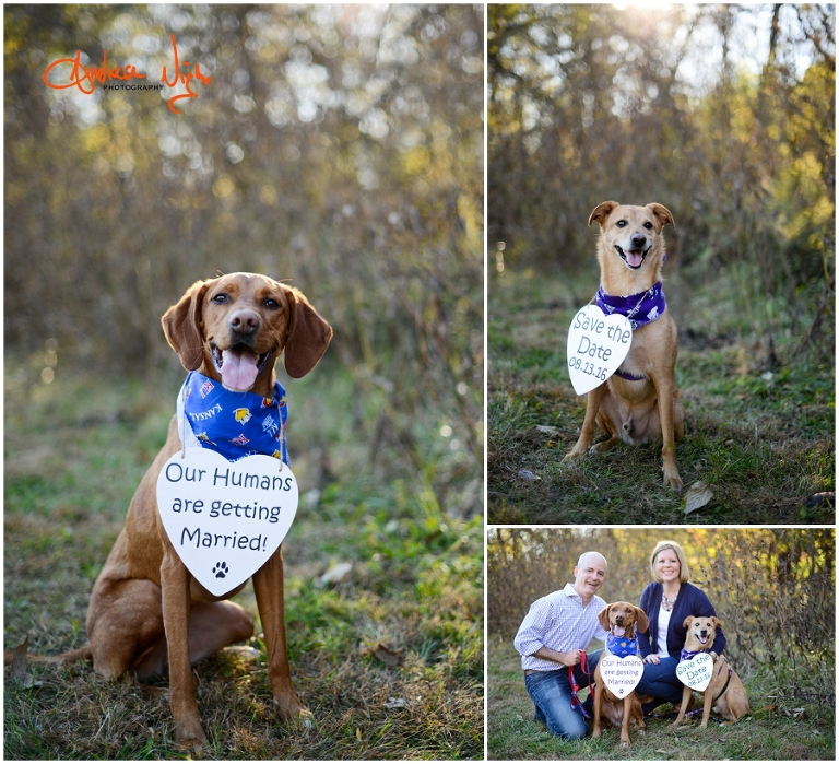 Olathe Engagement Session Liz And Ben Andrea Nigh Photography